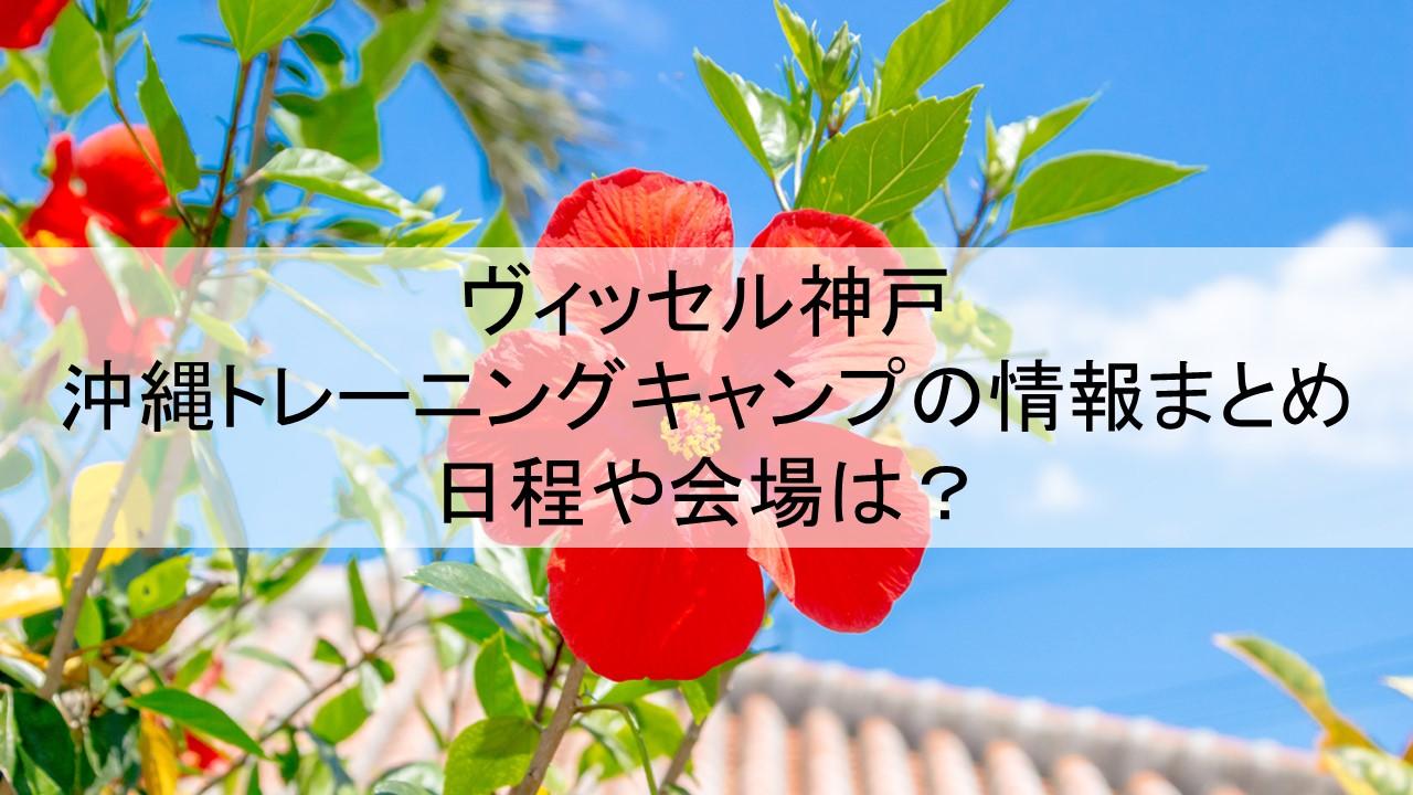 ヴィッセル神戸の沖縄トレーニングキャンプの情報まとめ┃日程や会場は?